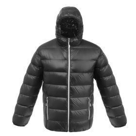 Куртка пуховая мужская Tarner, черная